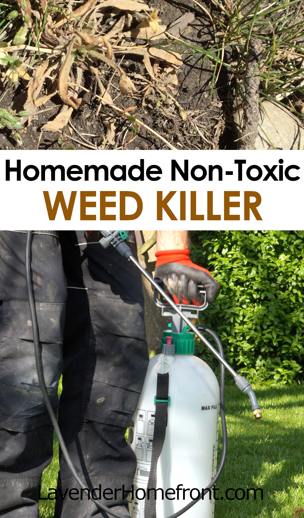 homemade non-toxic weed killer pinnable image with text overlay