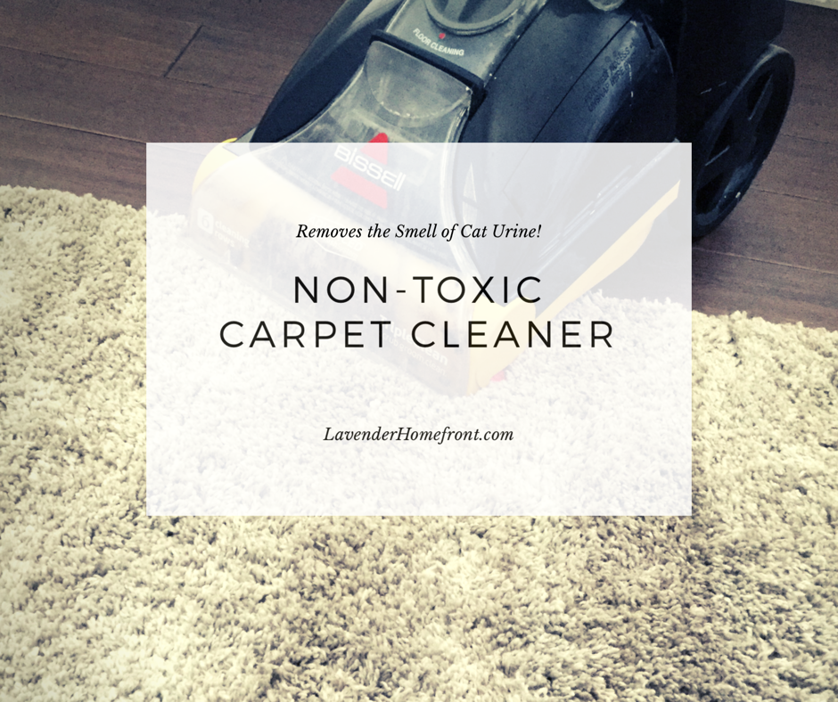 Non-Toxic Carpet Cleaner that removes the smell of cat pee