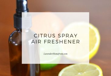 citrus spray air freshener main image