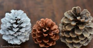 white-washed and bleached pinecones for garland