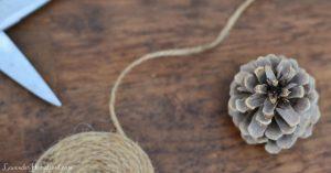 craft supplies for pinecone garland