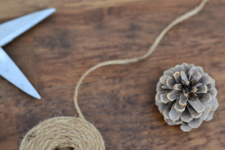 materials needed for making your own pinecone garland.