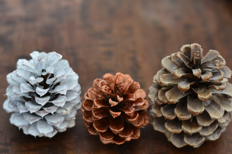 painted pine cones ready to be used in pinecone crafts.
