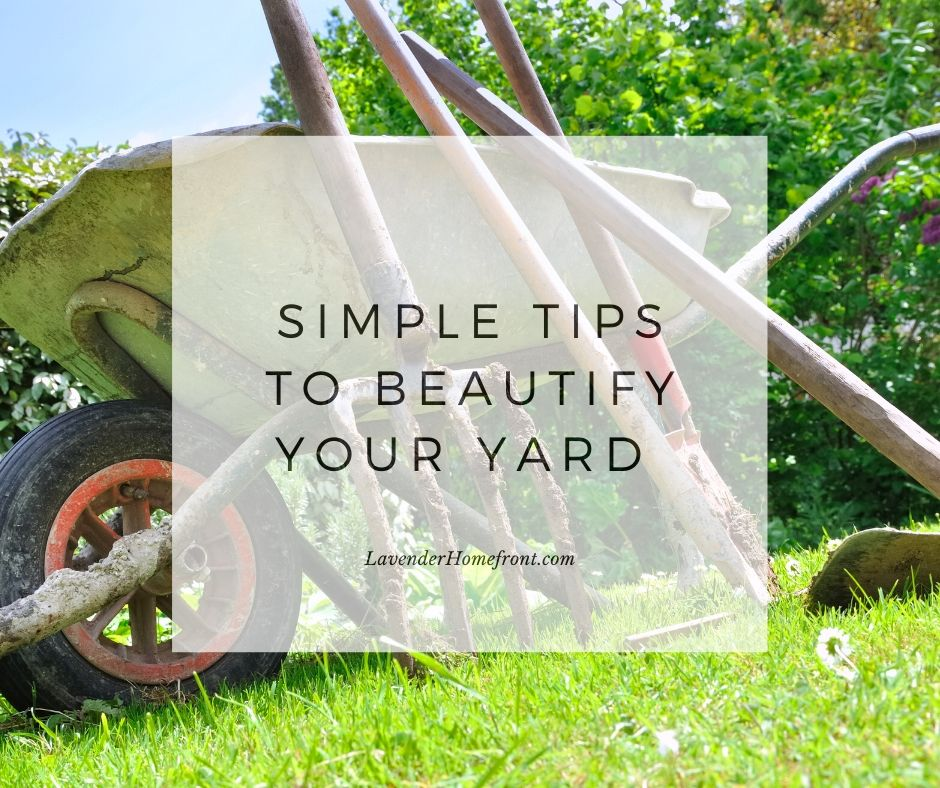 simple tips to update your yard