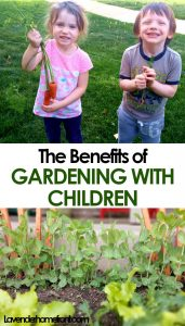 mental and emotional benefits of gardening with children