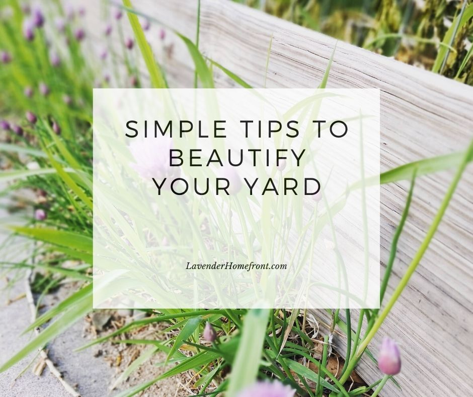 how to make your yard beautiful in a few easy steps