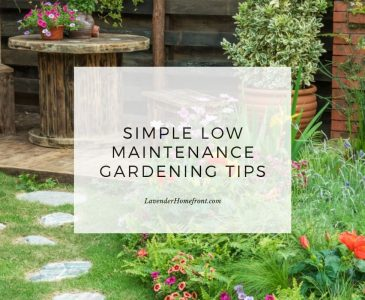 low maintenance gardening tips for a beautiful garden main image with text overlay.