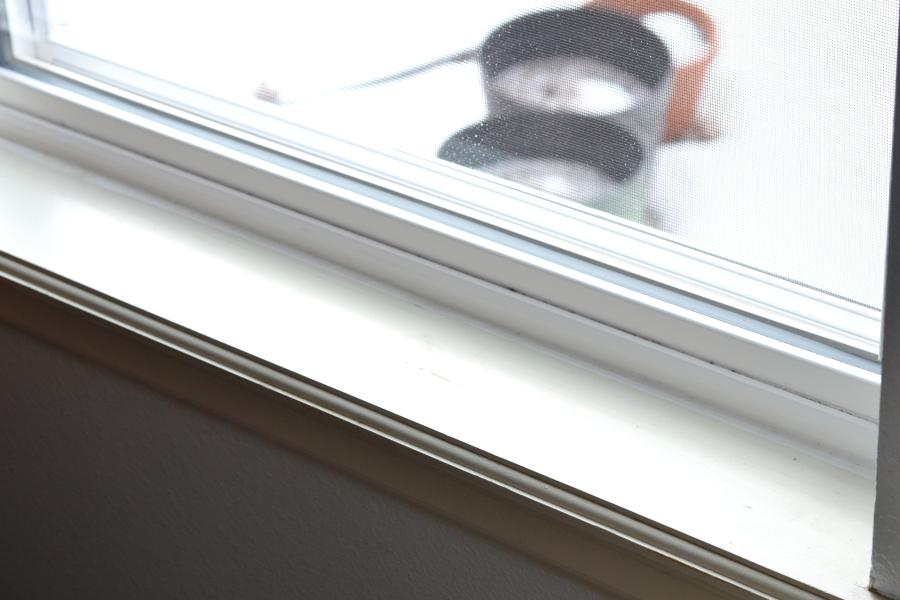 newly caulked windows for sustainable energy tips