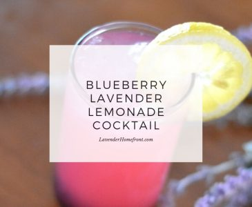 blueberry lavender lemonade cocktail main image