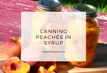 canning peaches in syrup main image