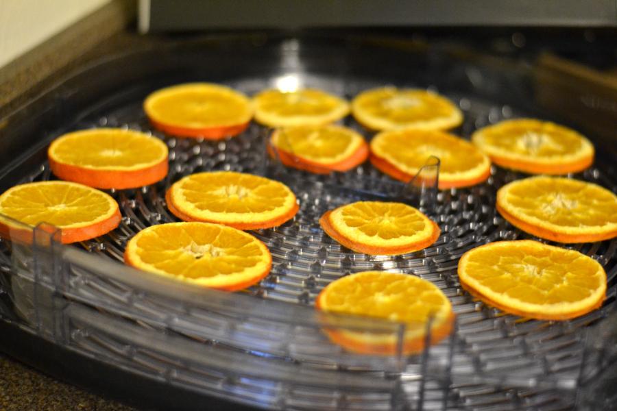 oranges getting dried in a food dehydrator
