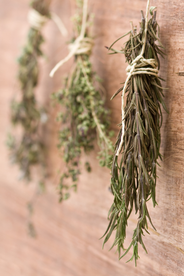 freshly dried herbs hanging on jute cord
