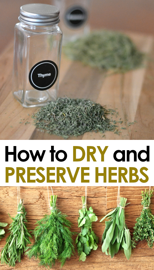 drying and preserving herbs pinnable image
