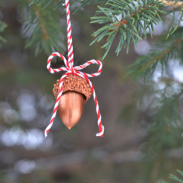 handmade ornament hanging outdoors on a tree