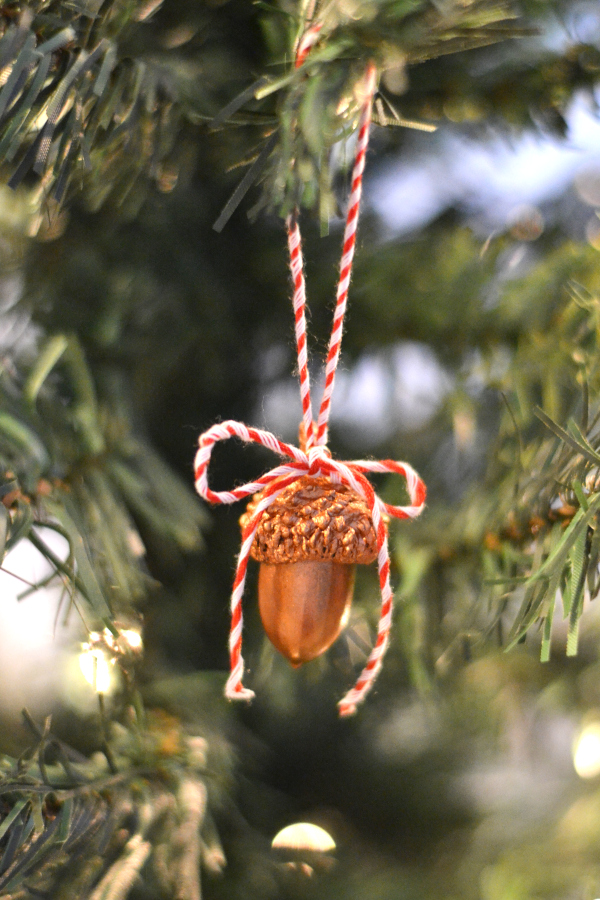 DIY ornament acorn hanging on a tree