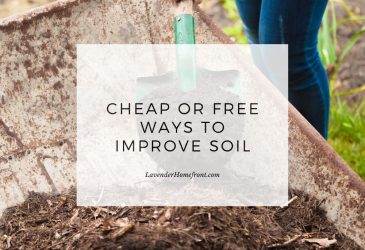 gardening soil free and cheap amendments main image