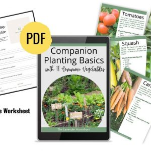 companion planting basics ebook sales photo.